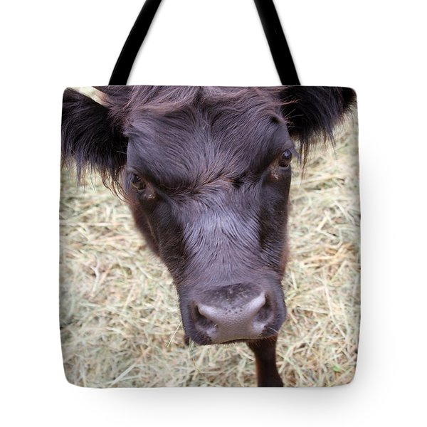 Don't Mess With Me Tote Bag by Karol Livote