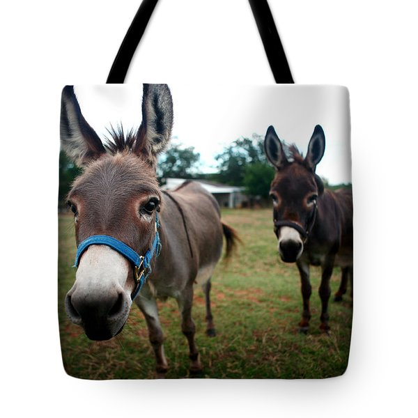 Tote Bag featuring the photograph Doting Donkeys by Lon Casler Bixby
