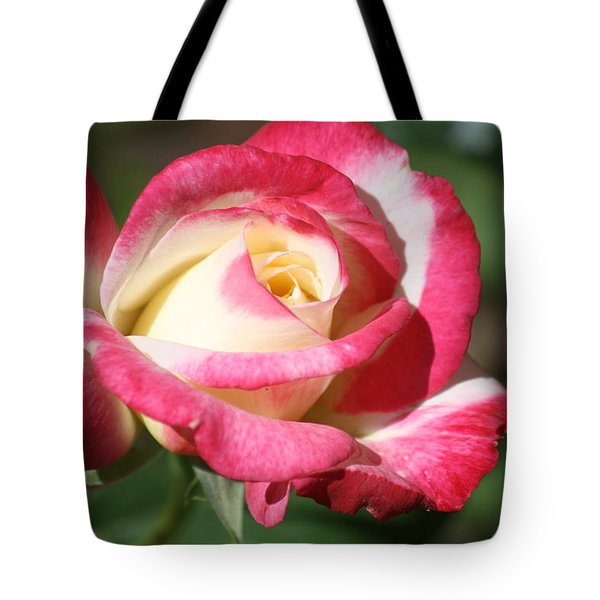 Double Delight Rose Tote Bag