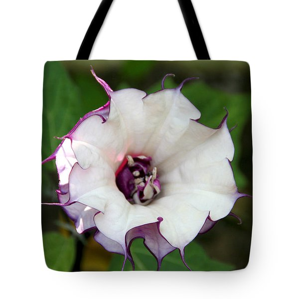 Double Purple Datura Tote Bag by Diana Haronis