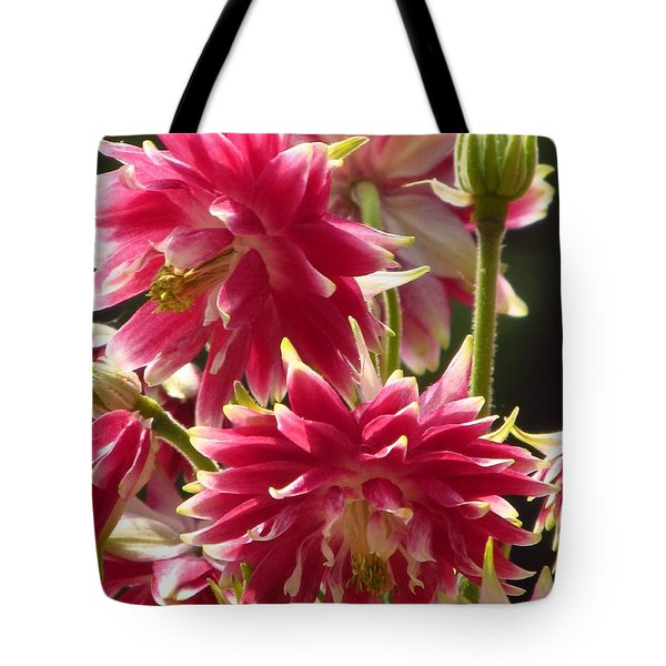 Double Red Columbine  Tote Bag