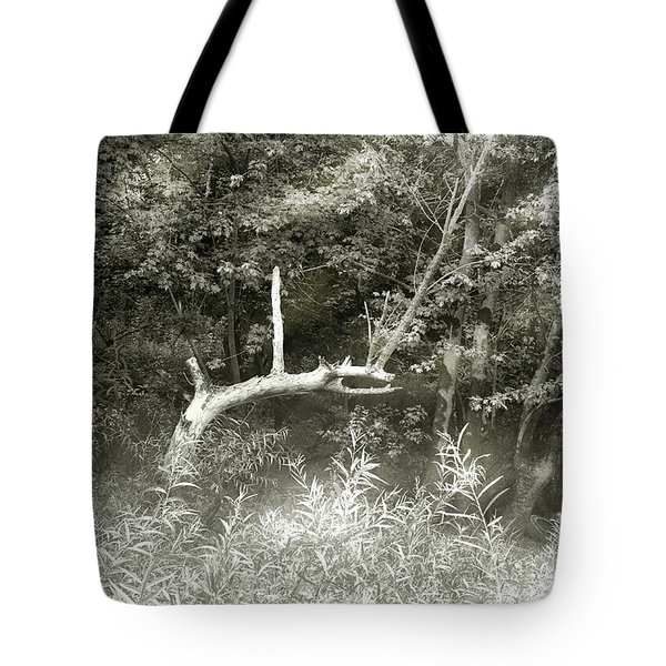 Tote Bag featuring the photograph Dragon Bones by Mary Almond