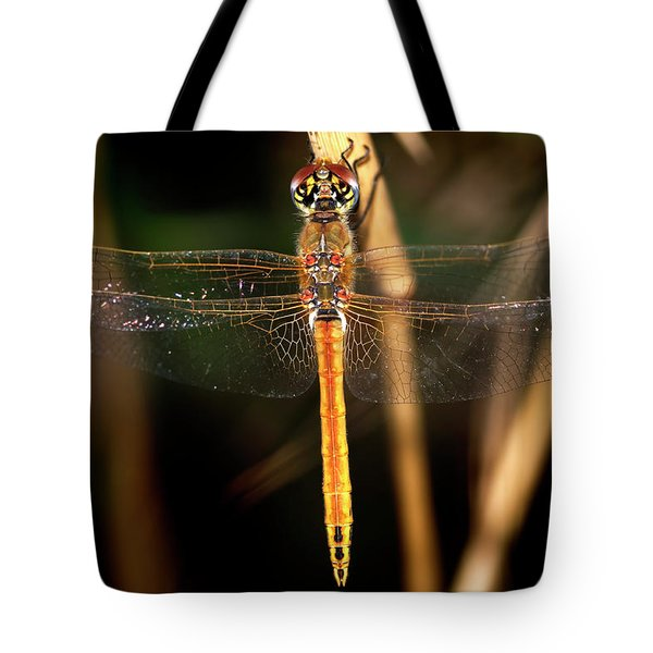 Tote Bag featuring the photograph Dragon Fly 1 by Pedro Cardona