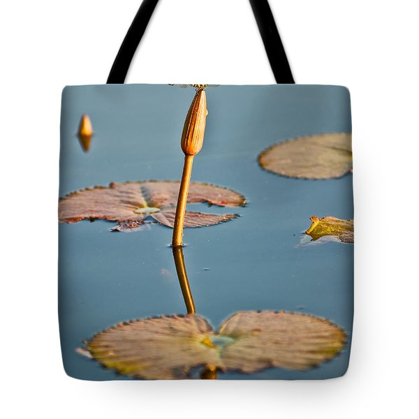 Tote Bag featuring the photograph Dragonfly And Lotus by Luciano Mortula
