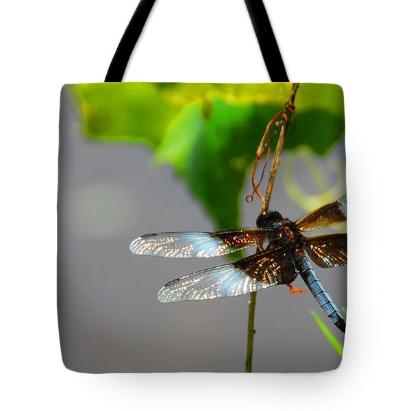 Dragonfly Tote Bag by Cindy Manero