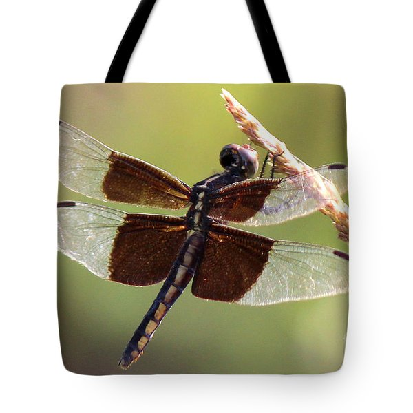 Tote Bag featuring the photograph Dragonfly Closeup by Kathy  White