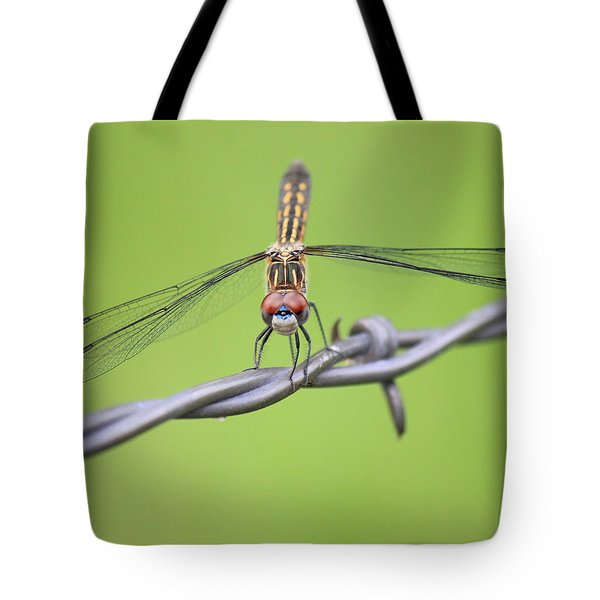 Tote Bag featuring the photograph Dragonfly On Barbed Wire by Penny Meyers