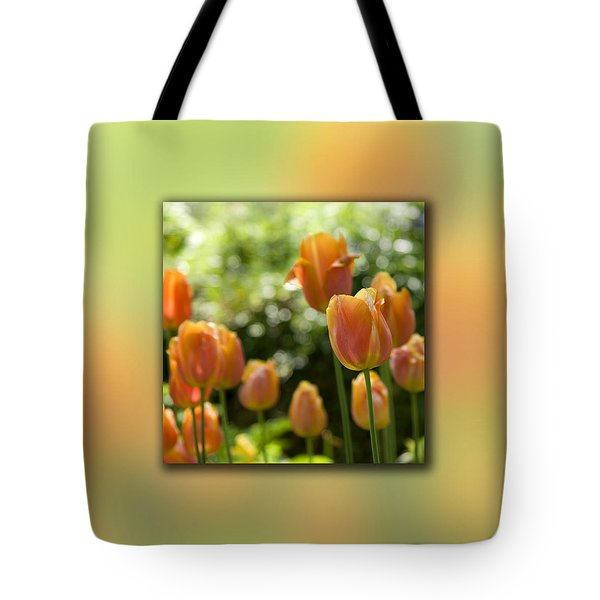 Dreamy Tulip Flowers Tote Bag by Pixie Copley