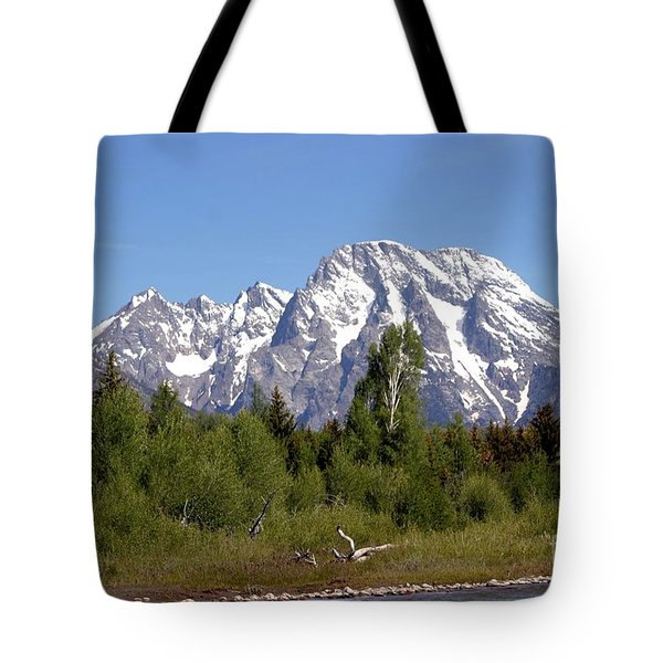 Driftwood And The Grand Tetons Tote Bag by Living Color Photography Lorraine Lynch
