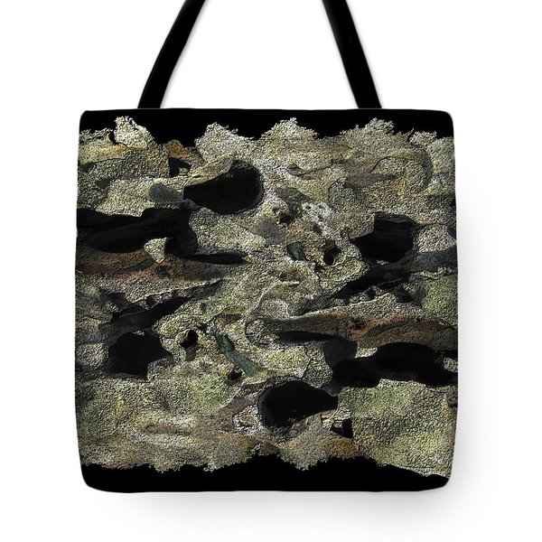 Driftwood Study Tote Bag by Tim Allen