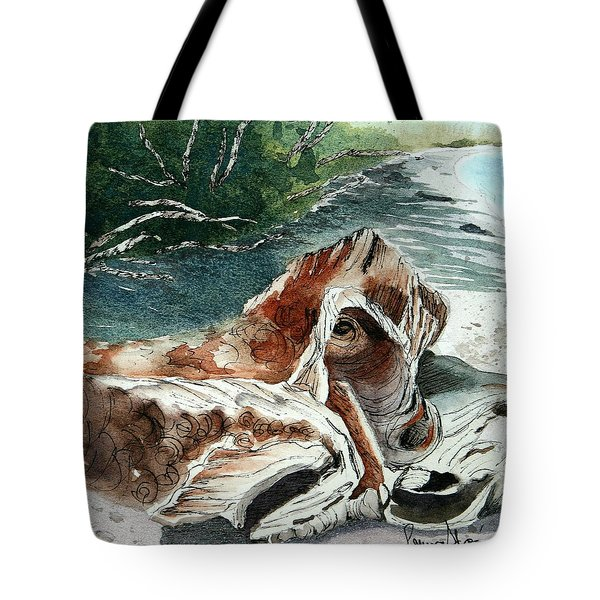 Driftwood-wisconsin Point Tote Bag
