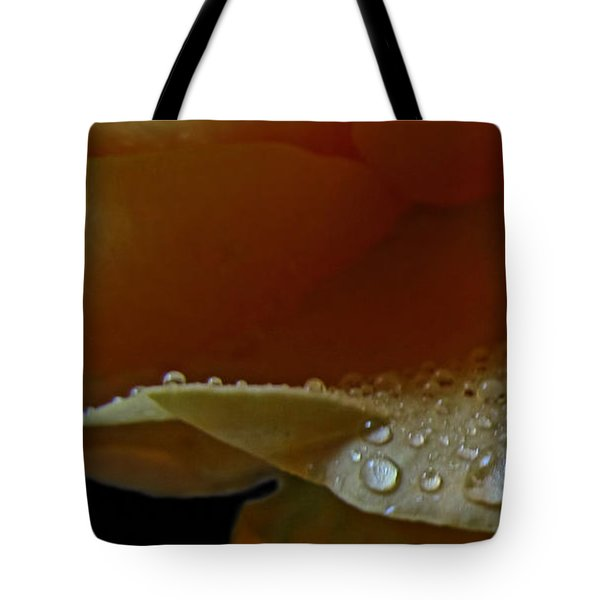 Tote Bag featuring the photograph Drops Of Light by Debbie Portwood
