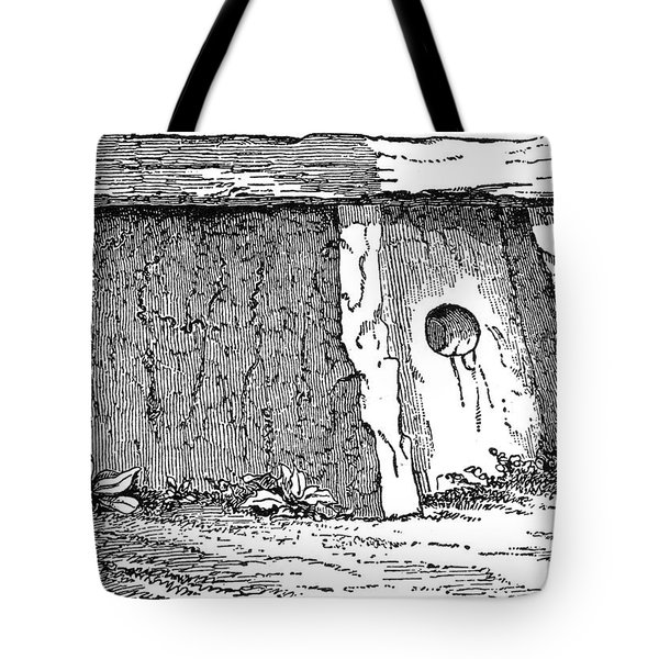 Druidic Megalith Tote Bag by Granger