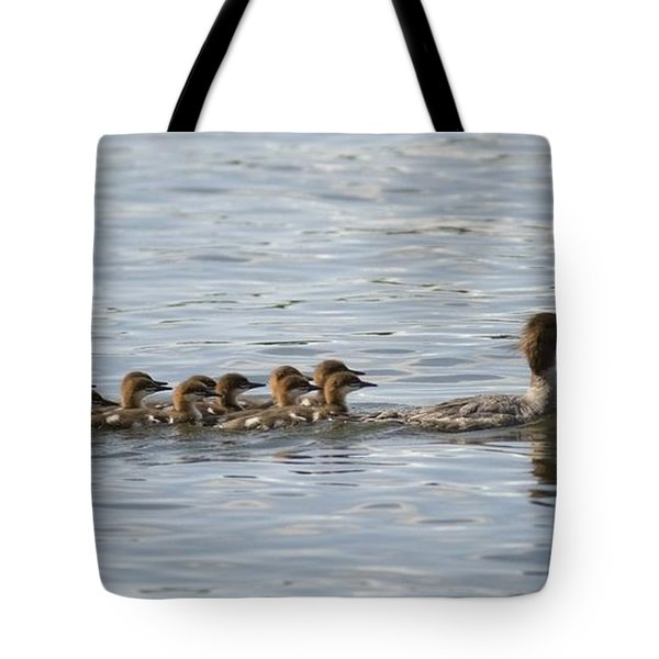 Duck And Ducklings Swimming In A Row Tote Bag by Keith Levit
