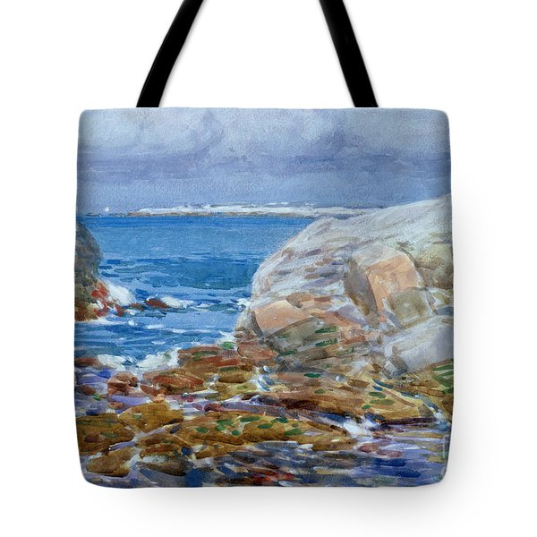 Duck Island Tote Bag by Childe Hassam