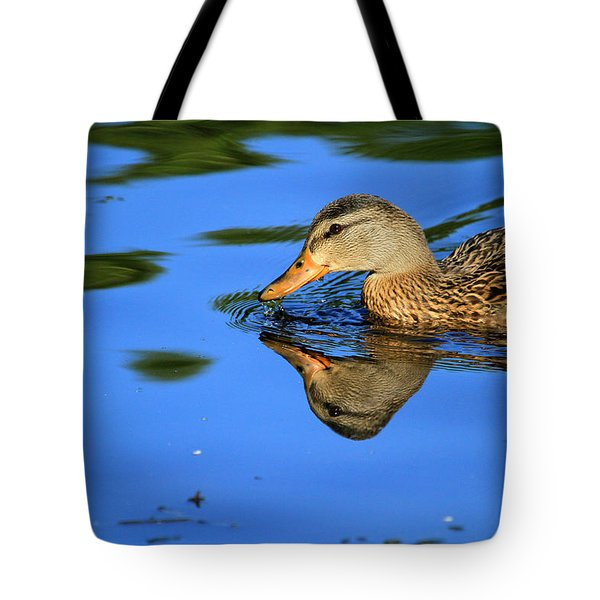 Duck Reflects Tote Bag by Karol Livote