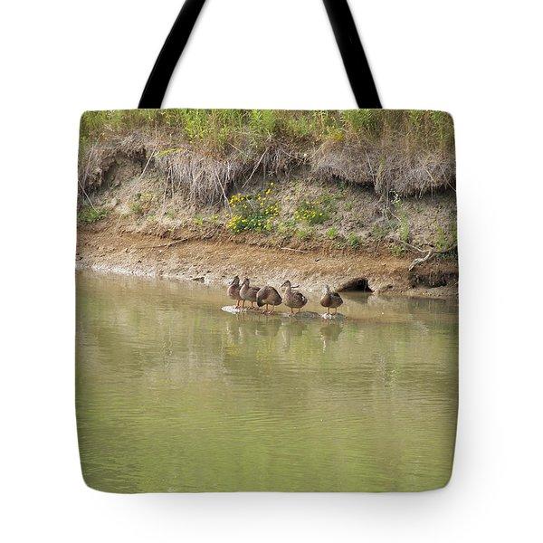Ducks In A Row Tote Bag by Corinne Elizabeth Cowherd