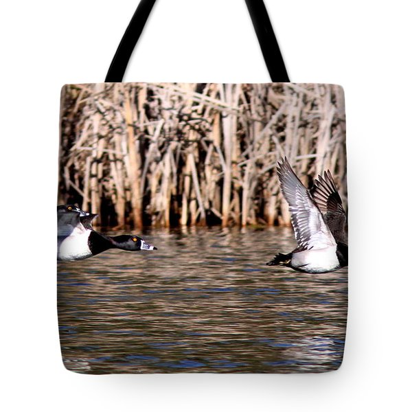 Ducks - Ring Neck - Hold Up Tote Bag by Travis Truelove