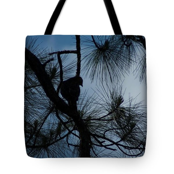 Tote Bag featuring the photograph Dusk by Joseph Yarbrough