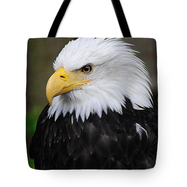 Eagle In Ketchikan Alaska 1371 Tote Bag