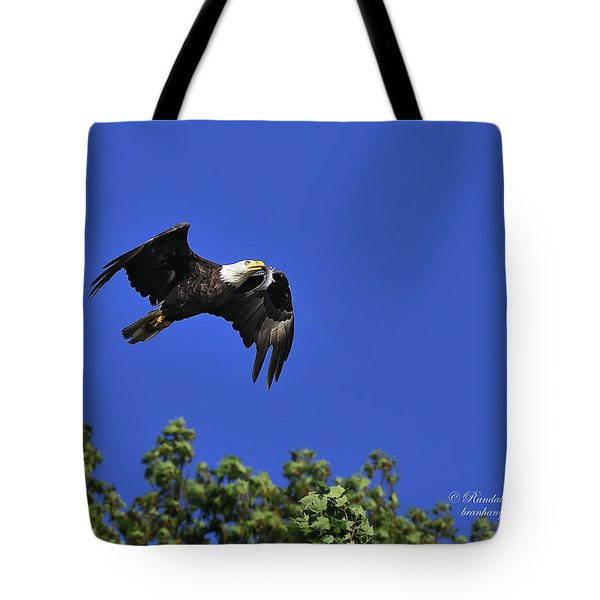 Tote Bag featuring the photograph Eagle Over The Tree Top by Randall Branham