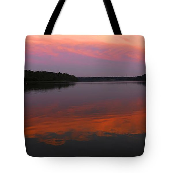 Tote Bag featuring the photograph Eagle Overlooking Domain by Randall Branham