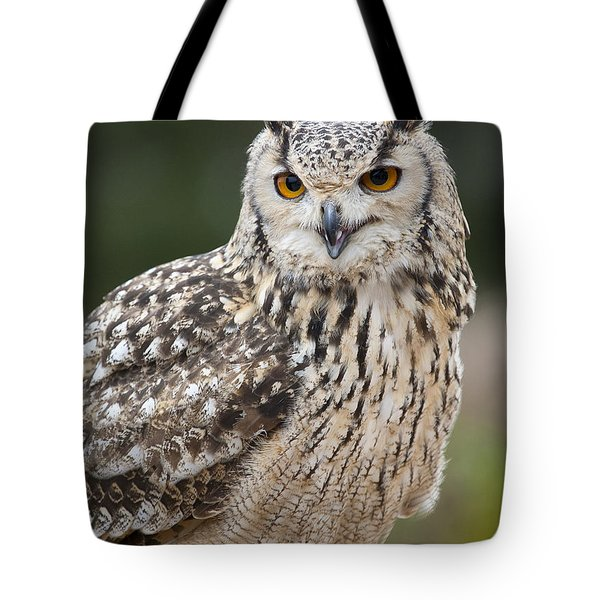 Eagle Owl II Tote Bag by Chris Dutton