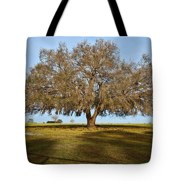 Early Morning Oak Tote Bag by Christopher Holmes
