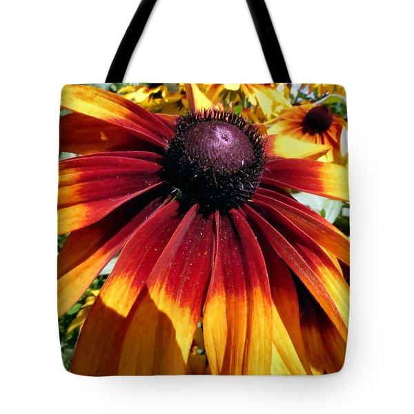 Earth Tone Tote Bag by Art Dingo