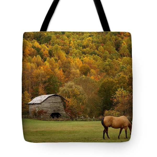Ease Into Autumn Tote Bag by J K York