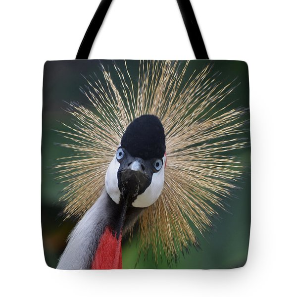 East African Crowned Crane Tote Bag by Maggy Marsh