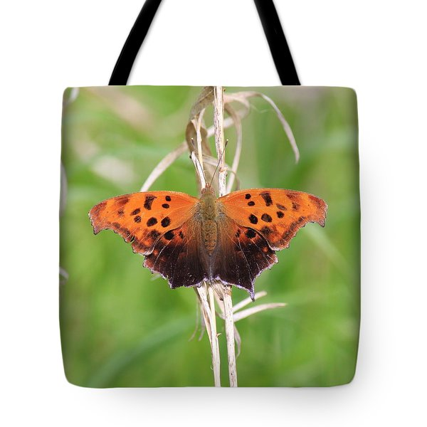 Tote Bag featuring the photograph Eastern Comma Butterfly by Penny Meyers