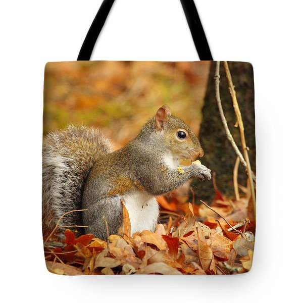 Eastern Grey Squirrel Tote Bag by Andrew McInnes