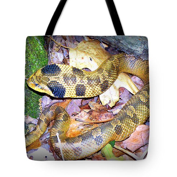 Eastern Hognose Snake Tote Bag by Kathy  White