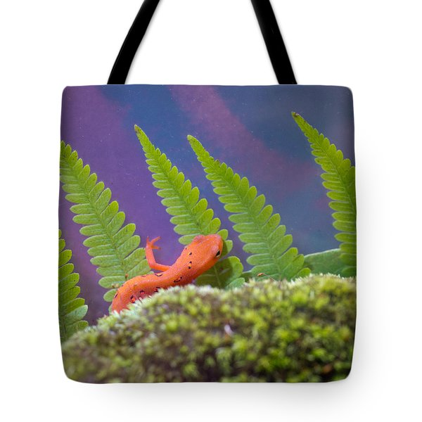 Eastern Newt 1 Tote Bag