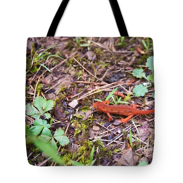 Eastern Newt Juvenile 2 Tote Bag