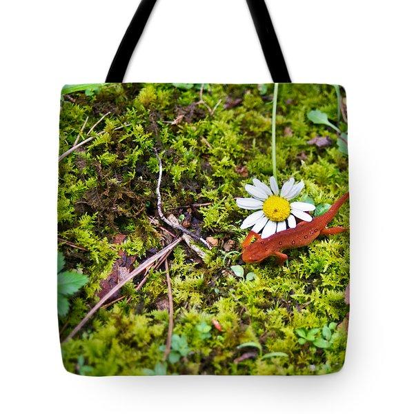 Eastern Newt Juvenile 3 Tote Bag