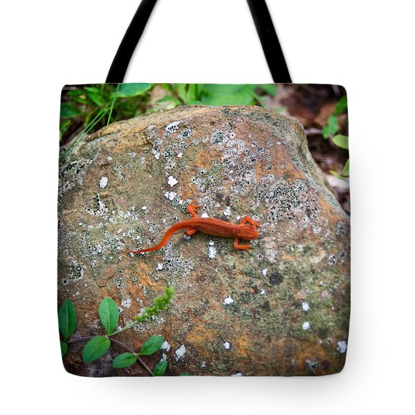 Eastern Newt Juvenile 6 Tote Bag