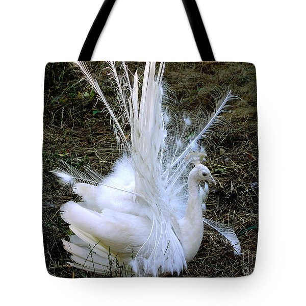 Effervescence Tote Bag by Rory Sagner