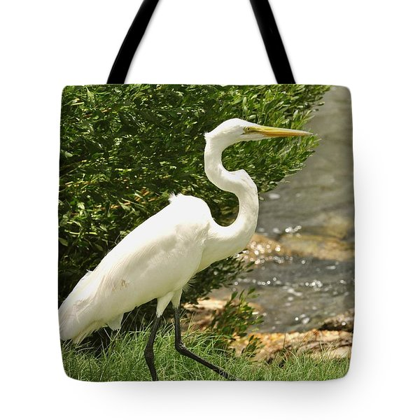 Tote Bag featuring the photograph Egret By The Bay by Rick Frost