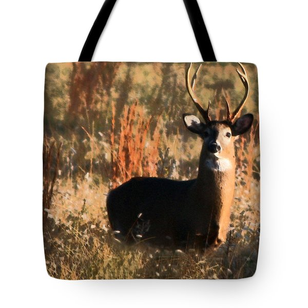 Eight Point Buck Tote Bag