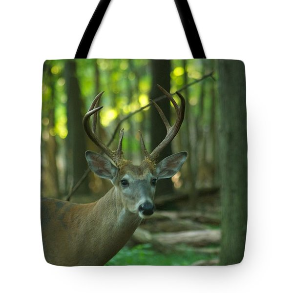 Eight Point_9531_4366 Tote Bag by Michael Peychich