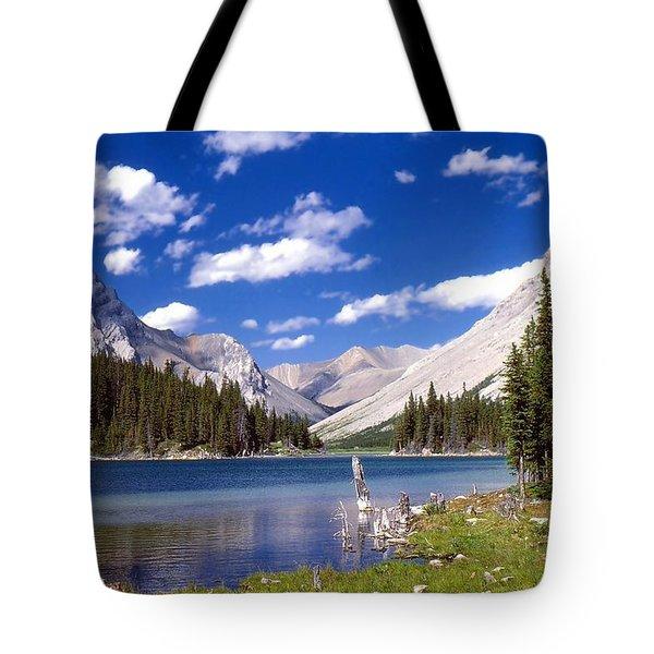 Elbow Lake Tote Bag by Jim Sauchyn