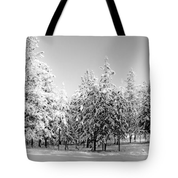 Tote Bag featuring the photograph Elegant Wonderland by Janie Johnson