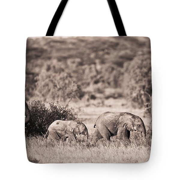 Elephants Walking In A Row Samburu Kenya Tote Bag by David DuChemin