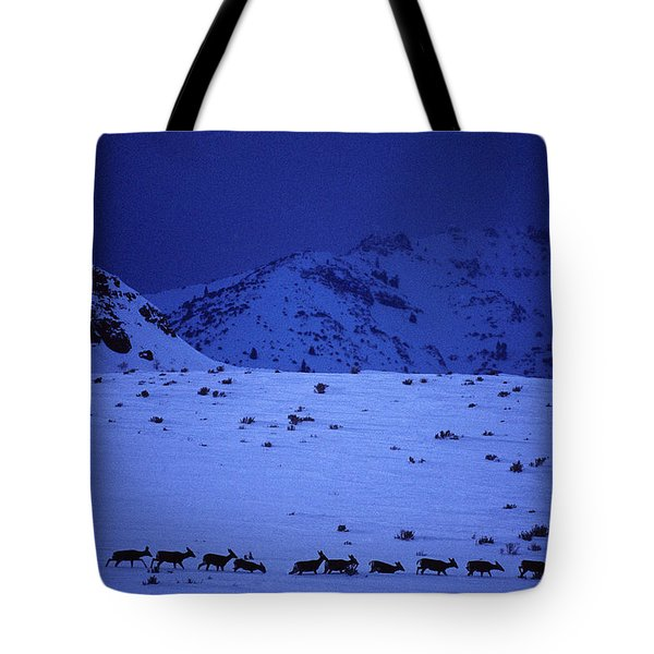 Elk Herd Moving Along A Mountain Base Tote Bag
