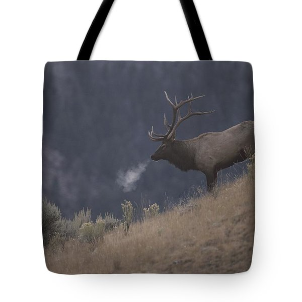 Elk Or Wapiti Bull On A Hillside Tote Bag