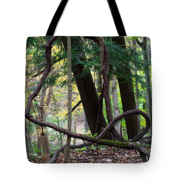 Embrace Tote Bag by Barbara McMahon
