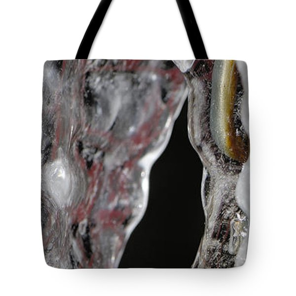 Encased Tote Bag by Lisa Knechtel