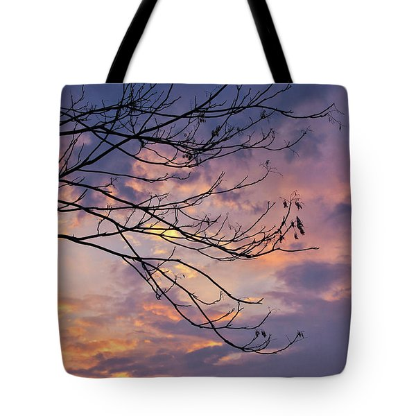 Enchanted Evening Tote Bag by Rachel Cohen